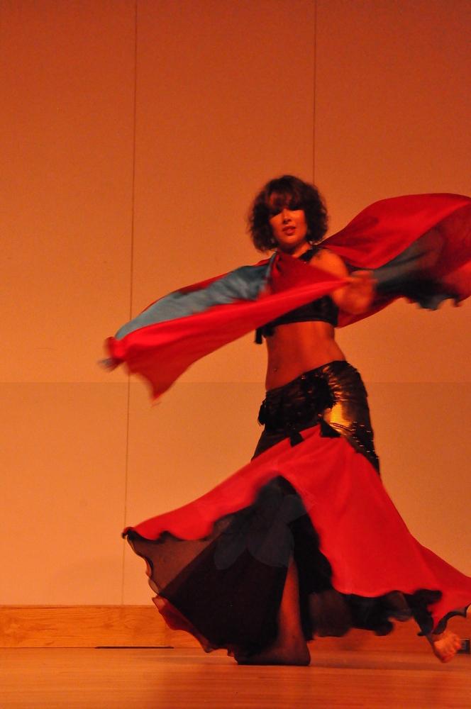 8-11-2012 Dance Showcase with Mohamed Shahin 128 (5)