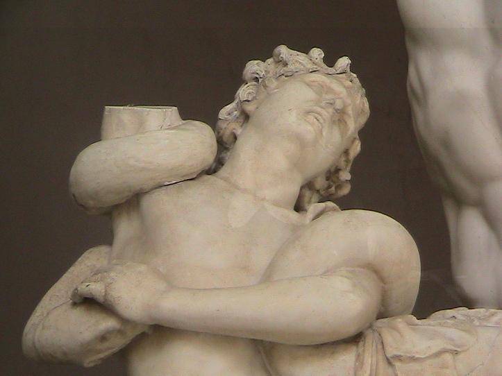 64 Rome Vatican Museum Laocoon