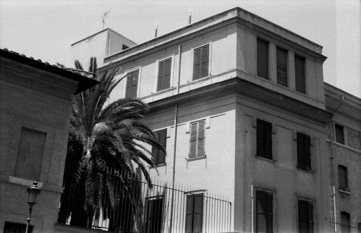 31 Rome Piazza Navona palm tree